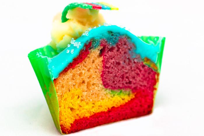 Rainbow_700