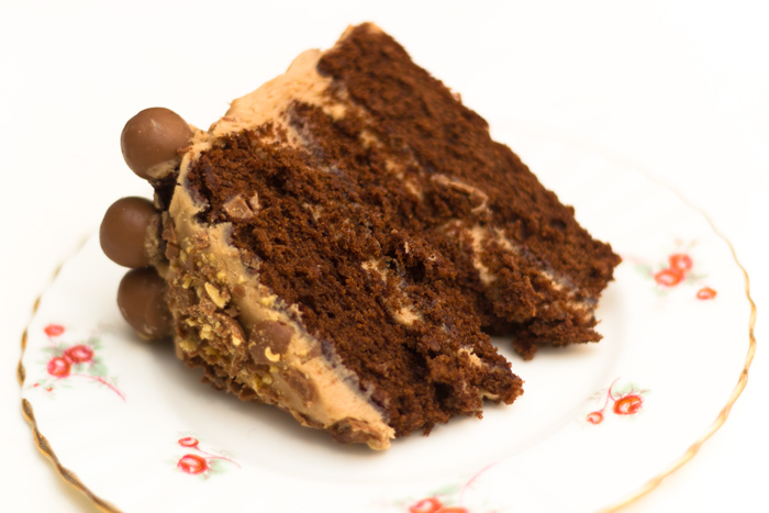 chocolate-malteser-cake-slice-700