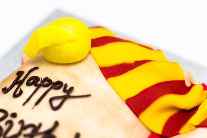 Harry-Potter-Cake-Snitch-and-Scarf-700