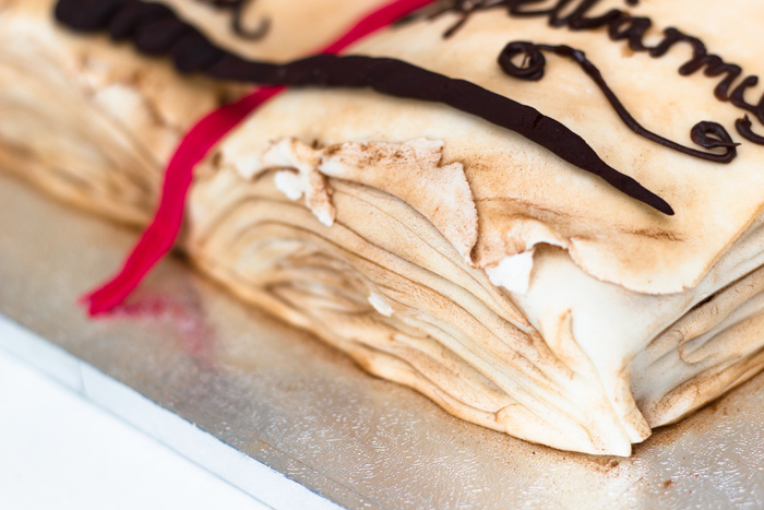 Harry-Potter-Cake-close-up-pages-700