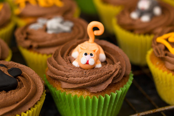 Ginger-cat-cupcake-700