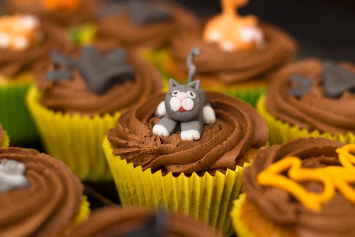 Grey-cat-cupcakes-700