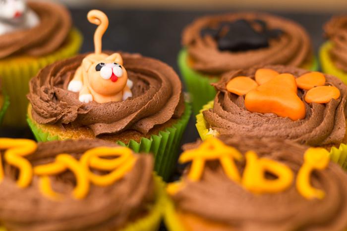 Tabby-cat-cupcake-700