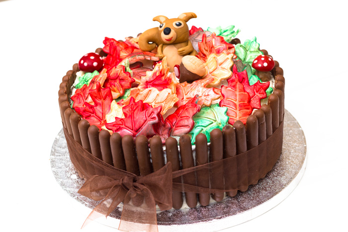 Squirrel themed Autumn Birthday Cake